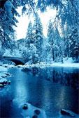 rivière hiver pensée du jour