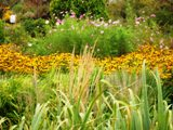 armoire de pensée, pensée du jour, les jardins Moore
