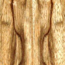 couleur essence de placage de bois