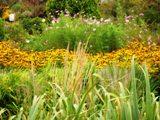 Les jardins Moore pensée du jour